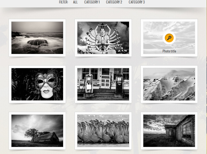 WordPress Portfolio Themes Reviews - Big Gallery WordPress Portfolio Theme